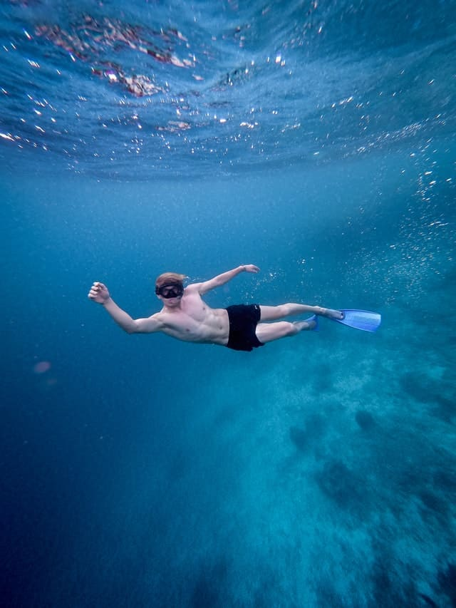 snorkeling-guide